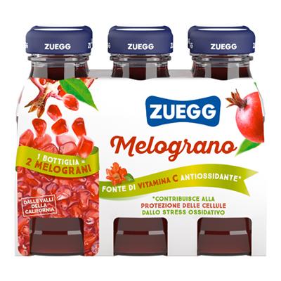 ZUEGG SUCCO ML.125X6 MELOGRANO