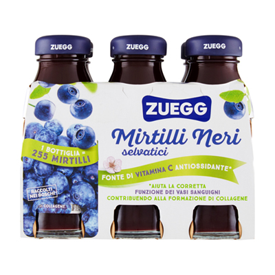 ZUEGG SUCCO ML.125X6 MIRTILLO
