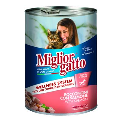 MIGLIOR GATTO BOCCONCINI GR.405 SALMONE