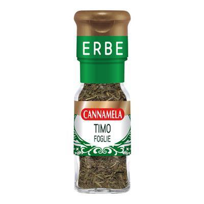 CANNAMELA SERIEORO TIMO FOGLIEGR.8